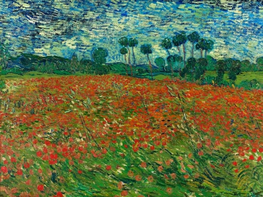 Poppy Field - Van Gogh, Vincent