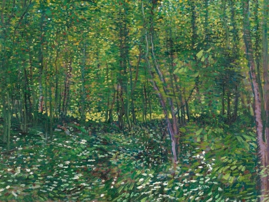 Trees And Undergrowth - Van Gogh, Vincent