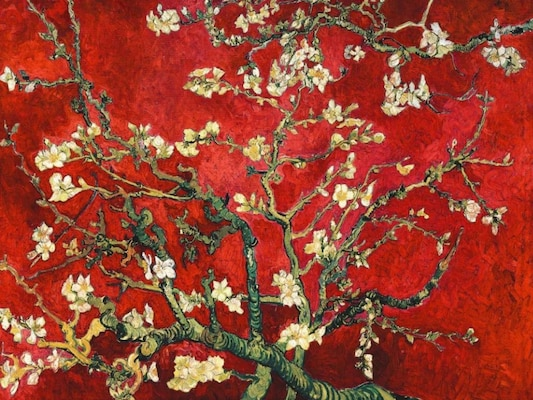 Mandorlo In Fiore (red Variation) - Van Gogh, Vincent